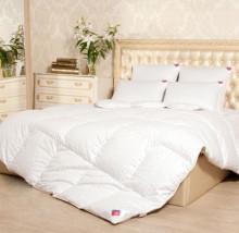 Одеяло пуховое размер 172*205 (2 сп.)